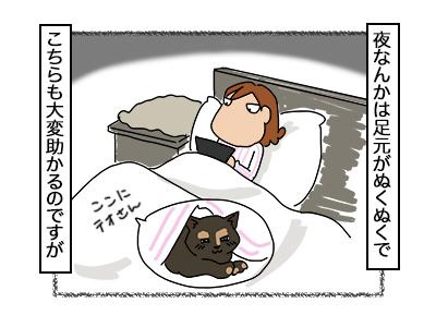22112017_cat2mini.jpg