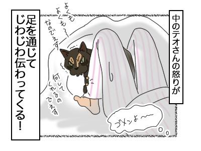 22112017_cat4mini.jpg