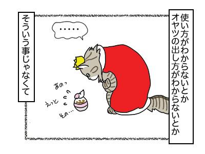 27112017_cat3mini.jpg