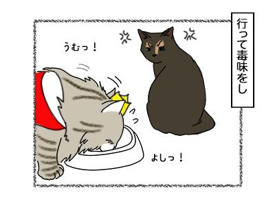 29092017_cat2mini.jpg
