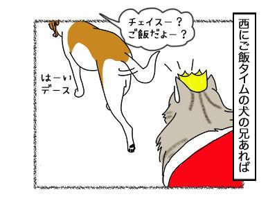 29092017_cat3mini.jpg