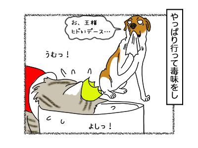 29092017_cat4mini.jpg
