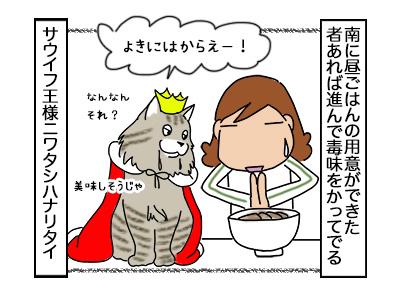 29092017_cat5mini.jpg
