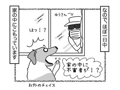 29112017_cat2mini.jpg