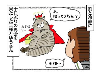 30102017_cat1mini.jpg