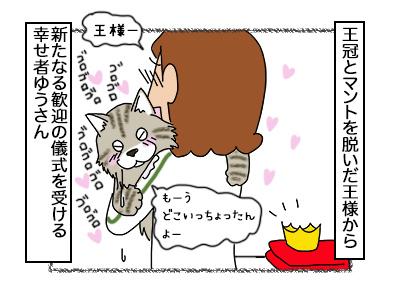 30102017_cat4mini.jpg