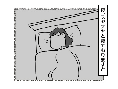 30112017_cat1mini.jpg