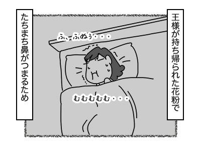 30112017_cat4mini.jpg