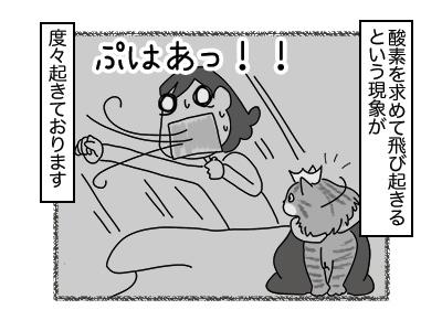 30112017_cat5mini.jpg