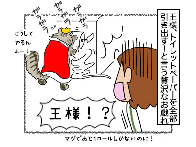 31102017_cat1mini.jpg