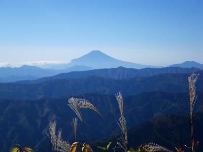 大岳山からの富士