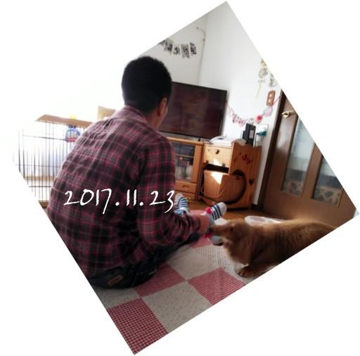 20171123111.jpg