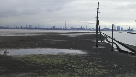 干潮のウユニ塩湖(江川海岸)