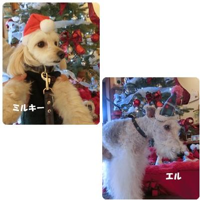 2017-12-48.jpg