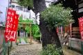 富島神社18