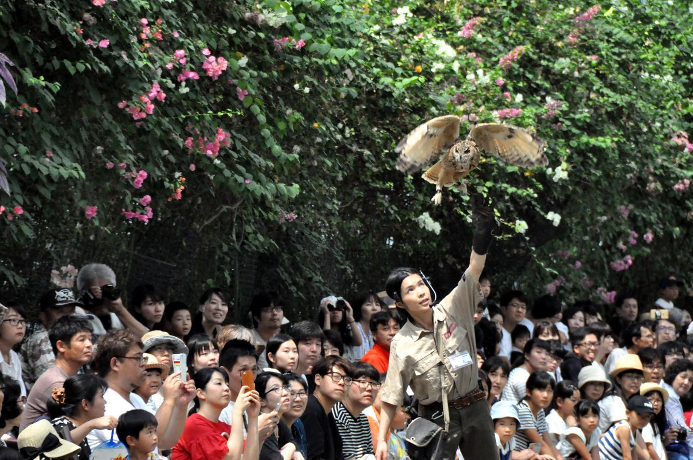 ④見てて、さぁー行くよ!神戸動物王国