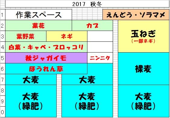 畑のレイアウト 2017秋冬