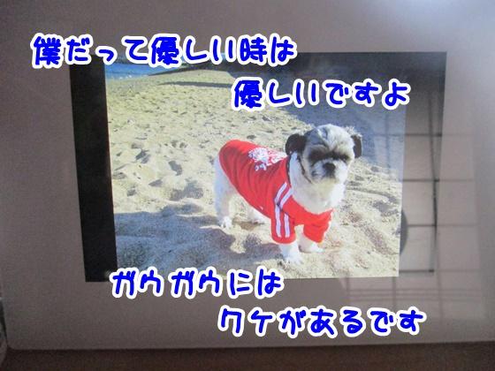 1011-10_201710111352504c5.jpg