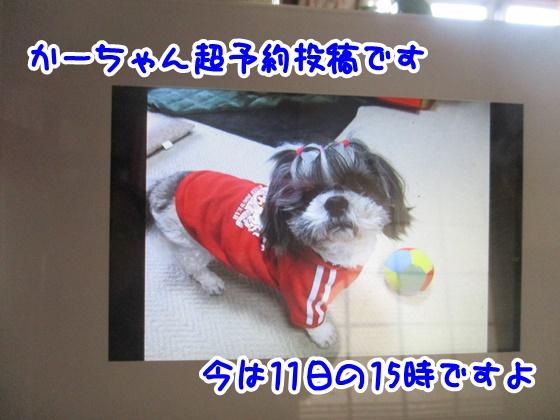 1012-05_2017101114442818d.jpg
