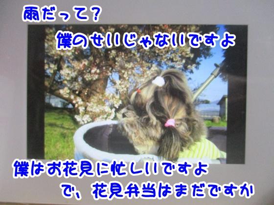 1016-01_20171016152903fbd.jpg