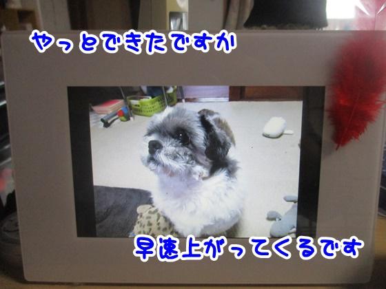 1102-01_20171102163015b0f.jpg