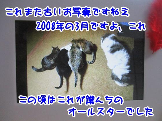 1106-10_20171106191037324.jpg