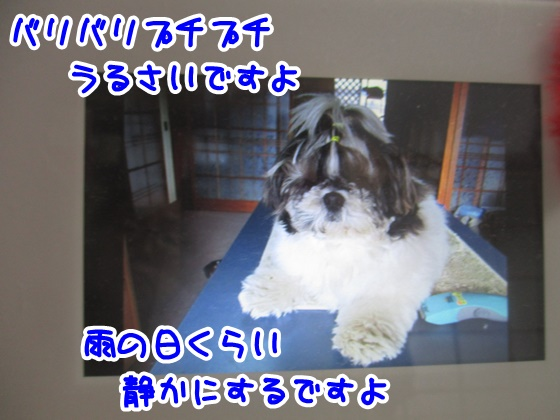1108-07_20171108145010e60.jpg