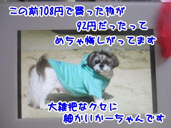 1115-07_20171115161039f70.jpg