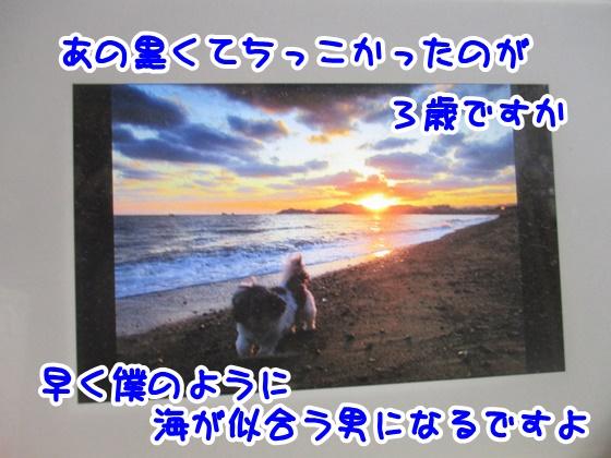 1124-02_201711231652250bf.jpg