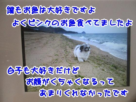 1130-10_20171130174707617.jpg