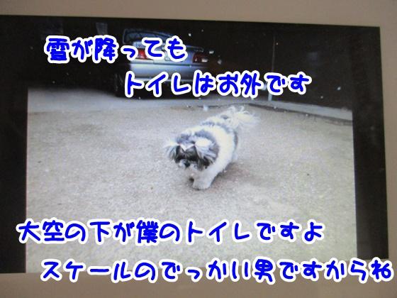 1211-10_20171211161732c16.jpg