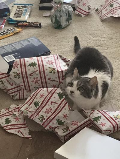 Christmas 2017 Coco