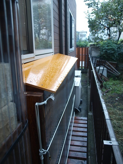 PA030004 雨天天井水はじく