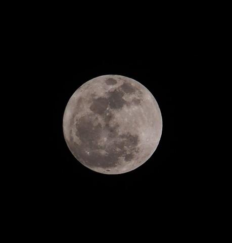 PC030001 今宵の月