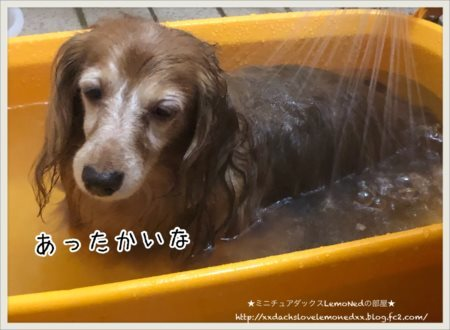 2017/11/29風呂1