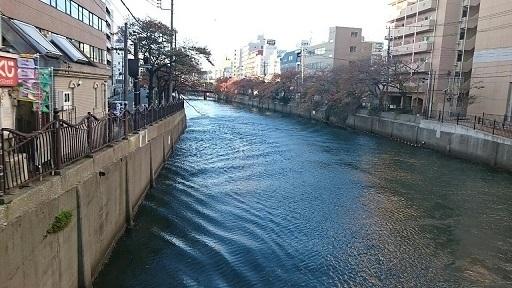 20171109東京 (8)