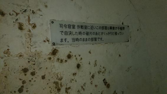 DSC_01421.jpg