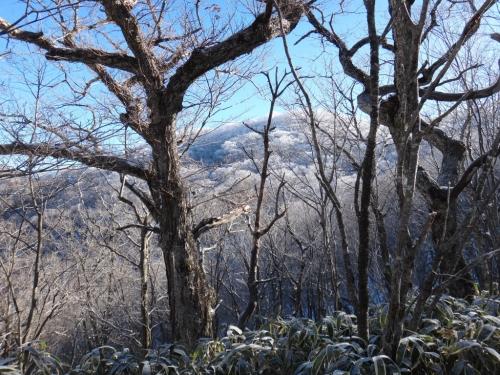 赤城地蔵岳DSC00027