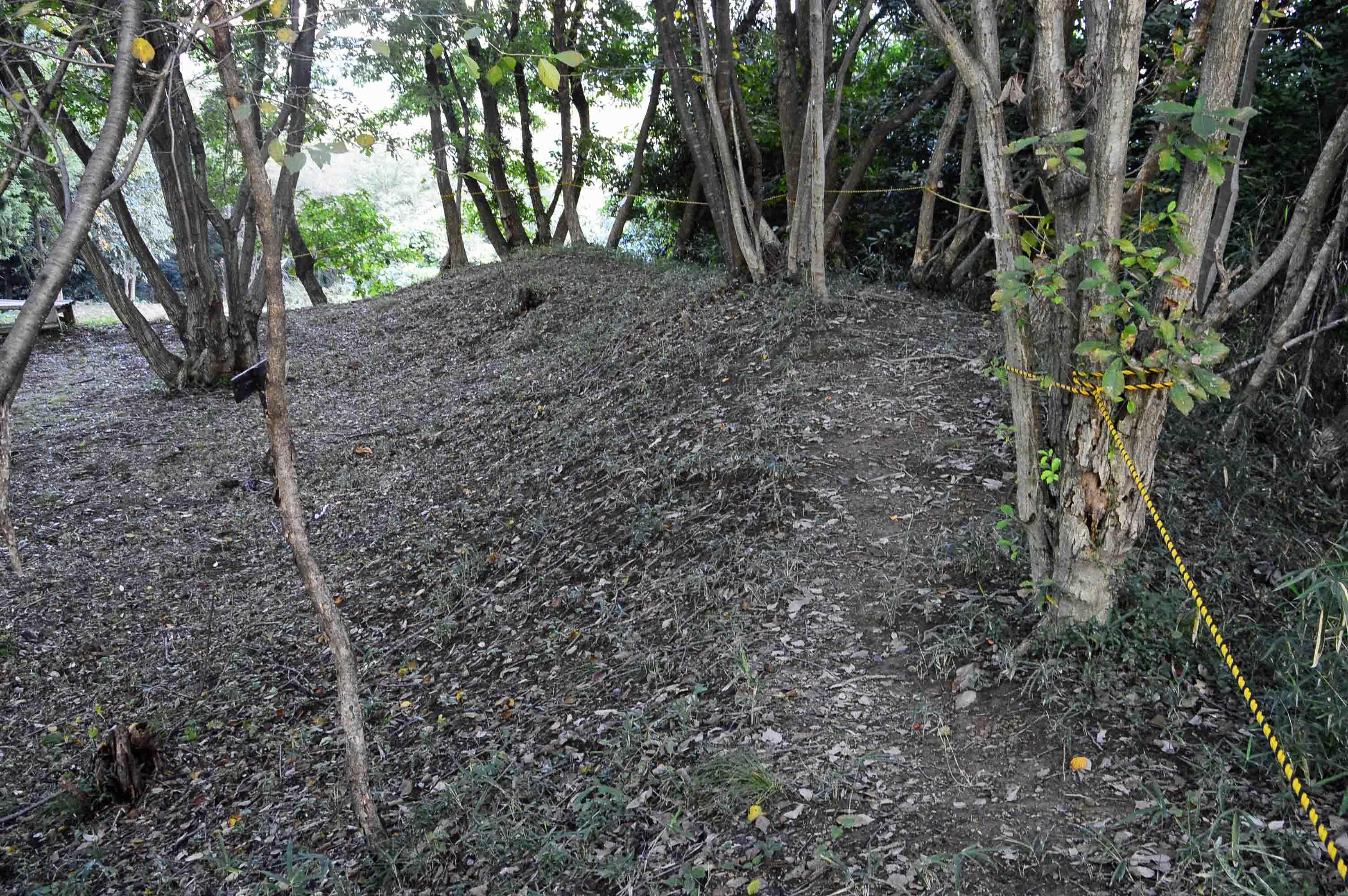 茶臼山 本丸の土塁