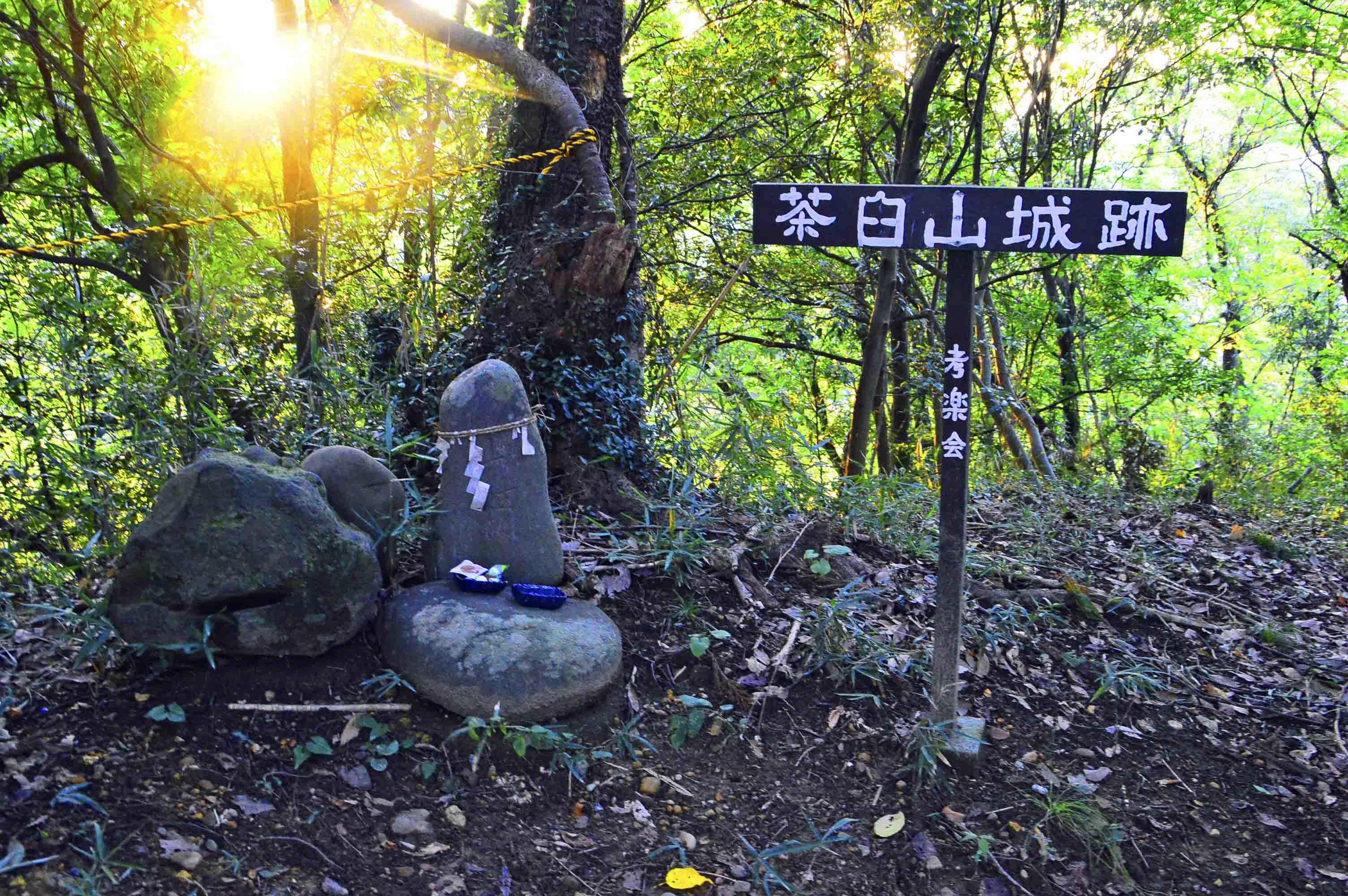 茶臼山城跡 本丸