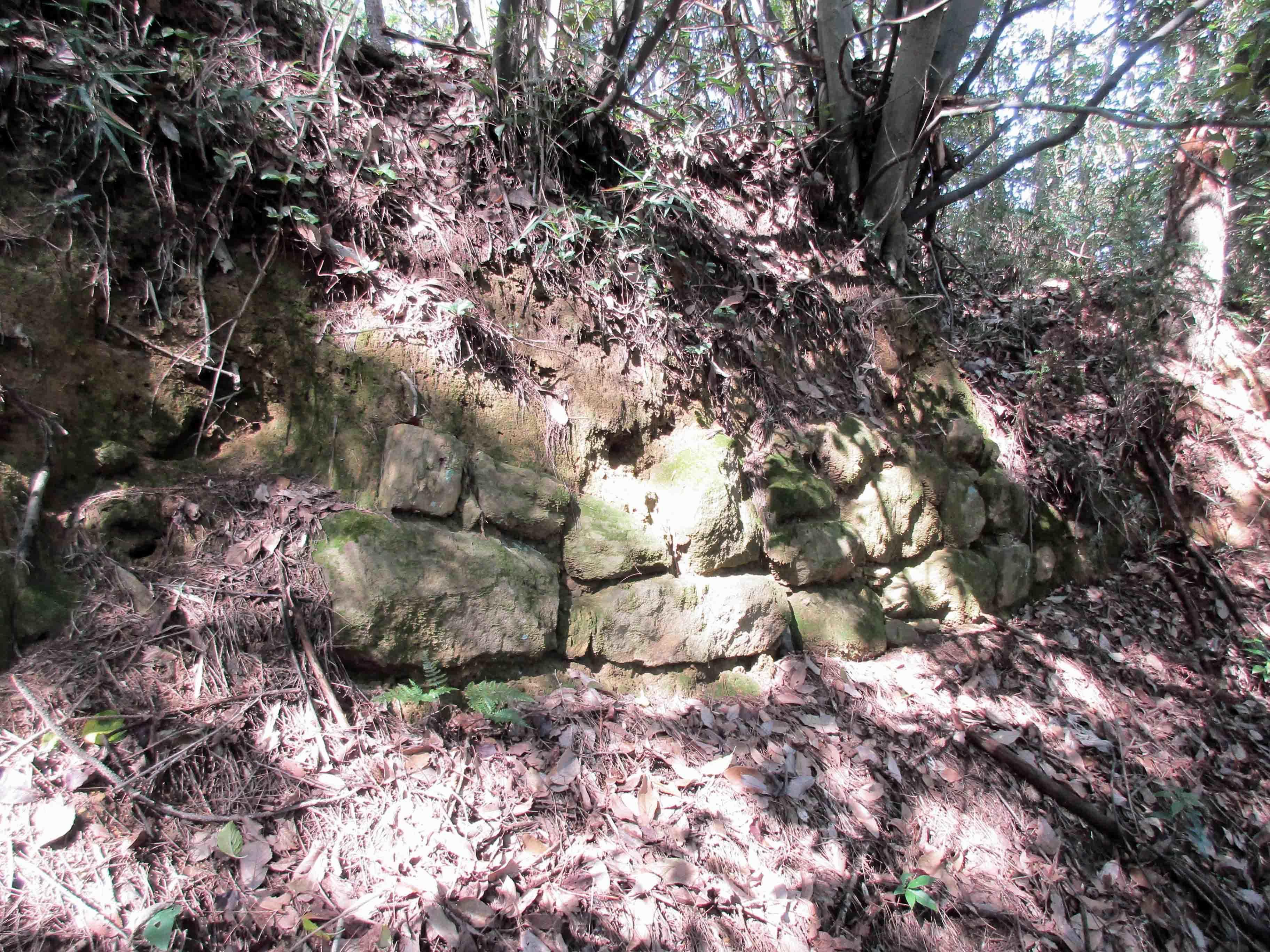 平井金山 石垣1