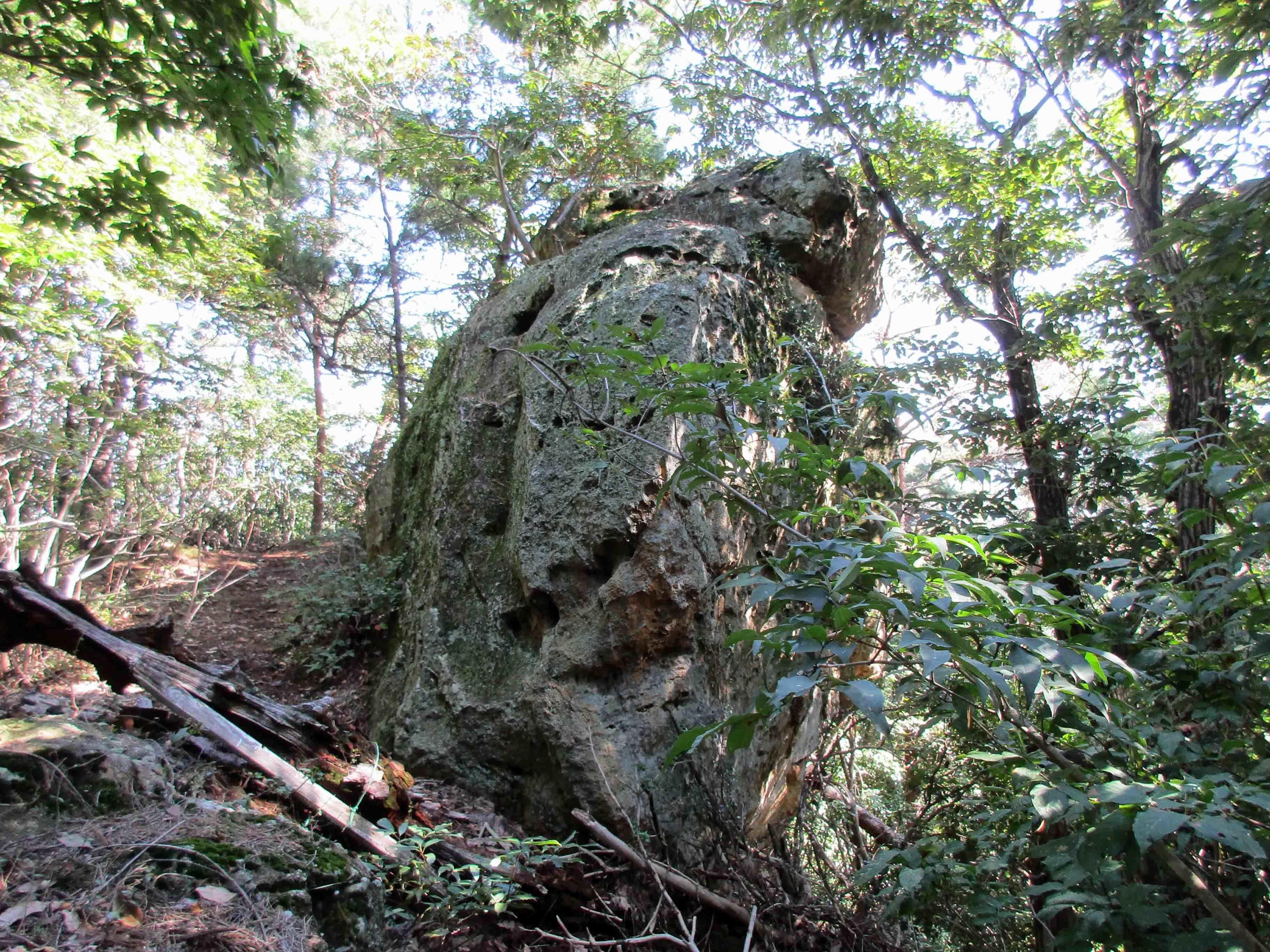平井金山 大岩
