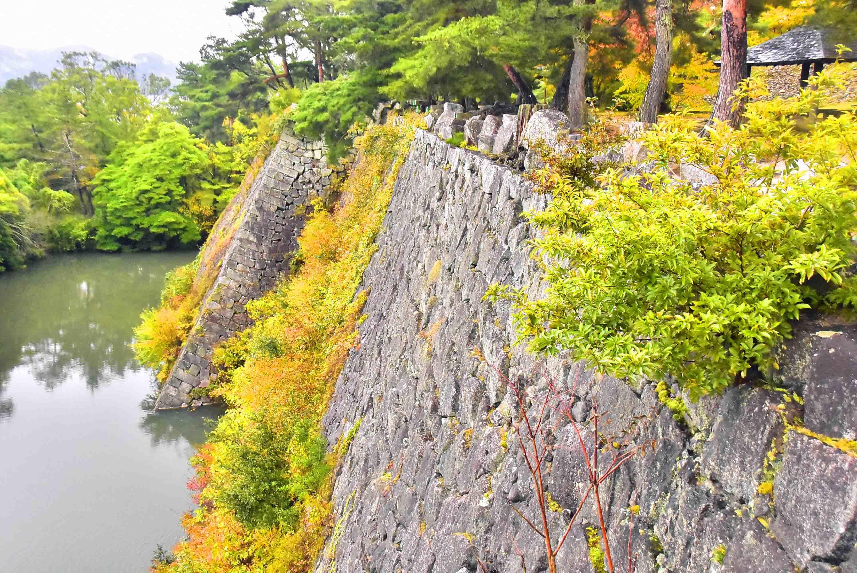 伊賀上野 高石垣と内堀