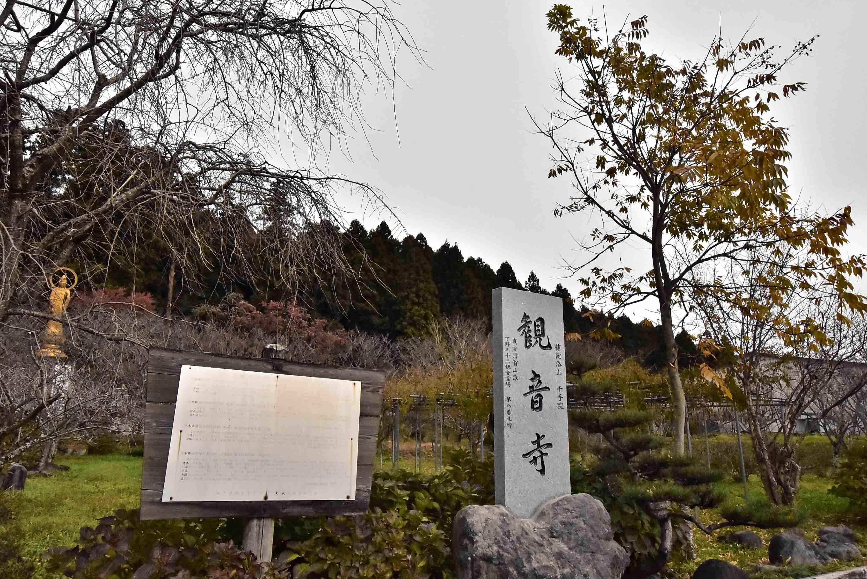澤村城 遠景