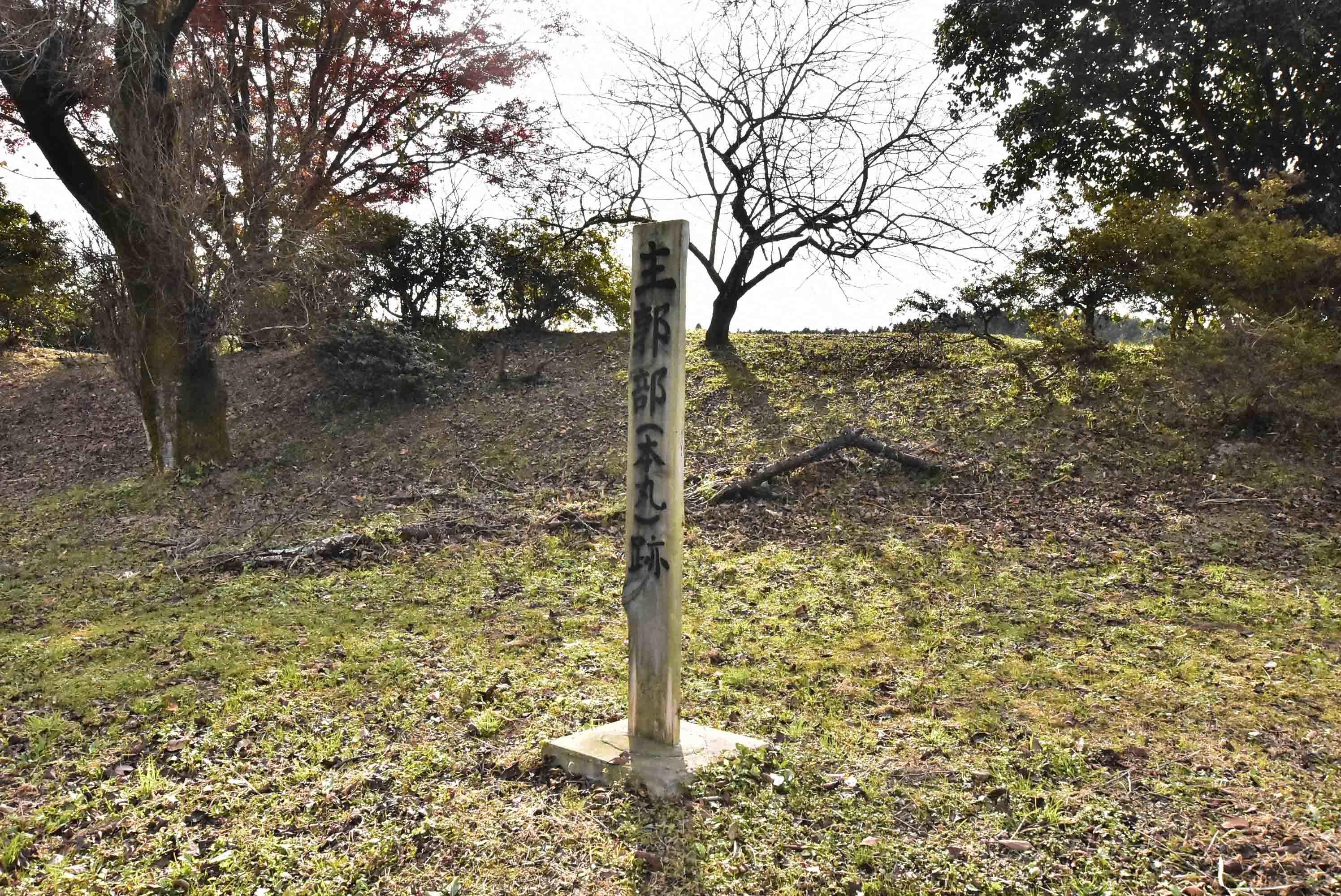 川崎城 本丸
