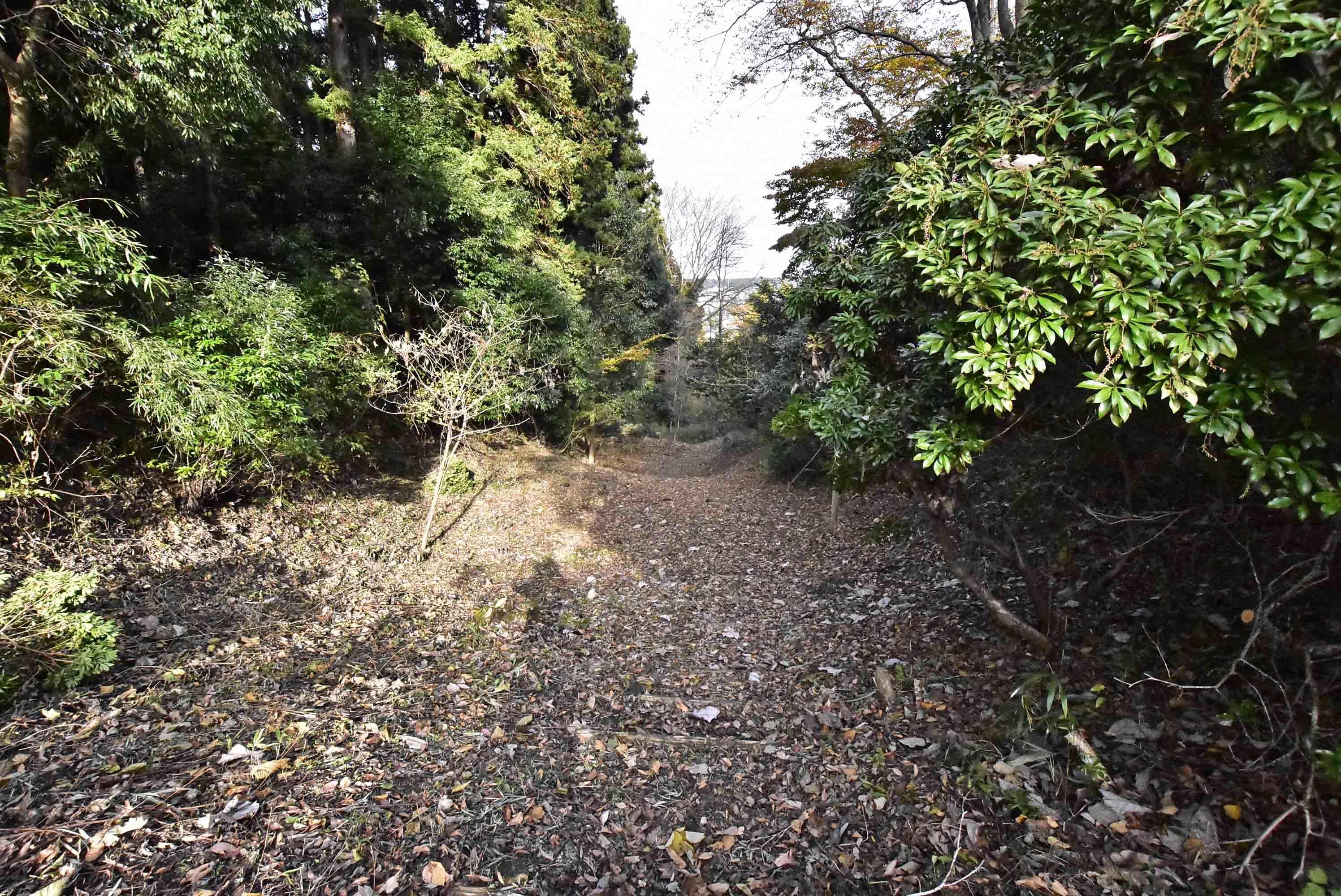 川崎城 三の堀