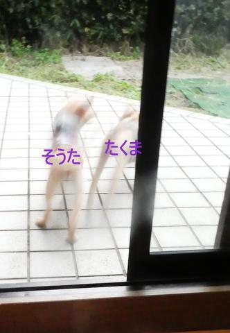 P1020050-001.jpg