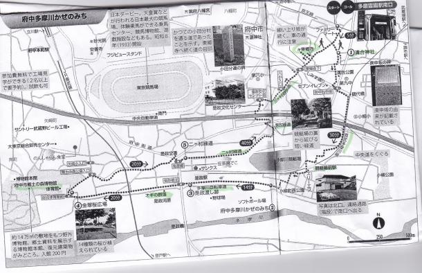 多摩川かぜの道