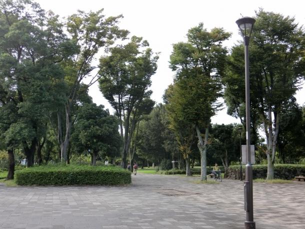 府中市郷土の森
