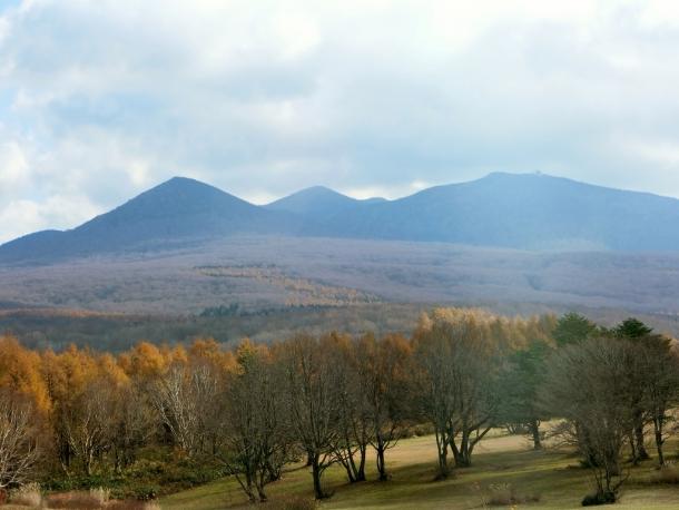 萱野茶屋から八甲田連山